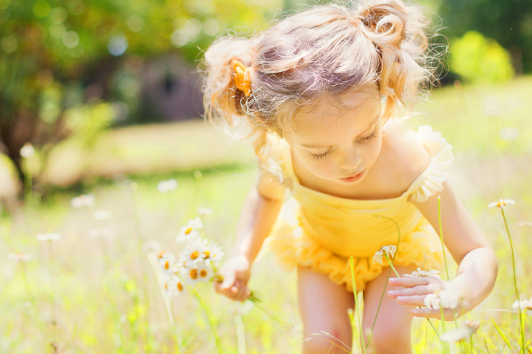 Photo of a child picking daisies.