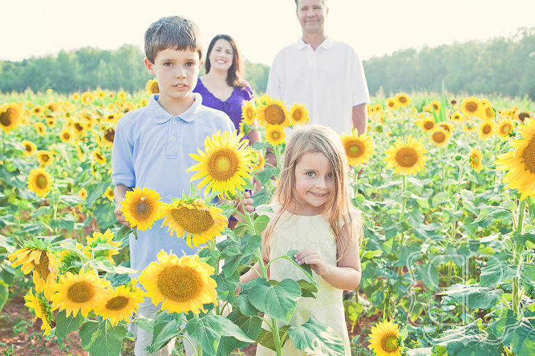 Children photographed in field by Becca Bond Photographer