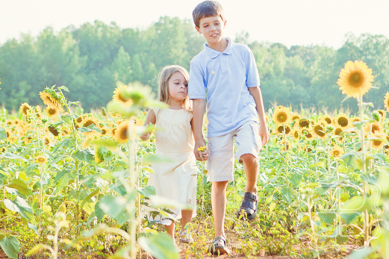 Children walk through a sunflower field, photographed by Becca Bond