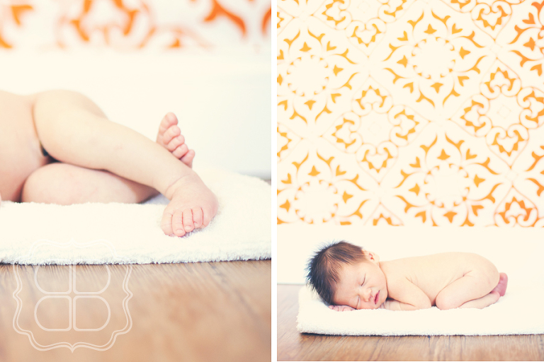 In home photographer for babies and newborns in Charlotte NC