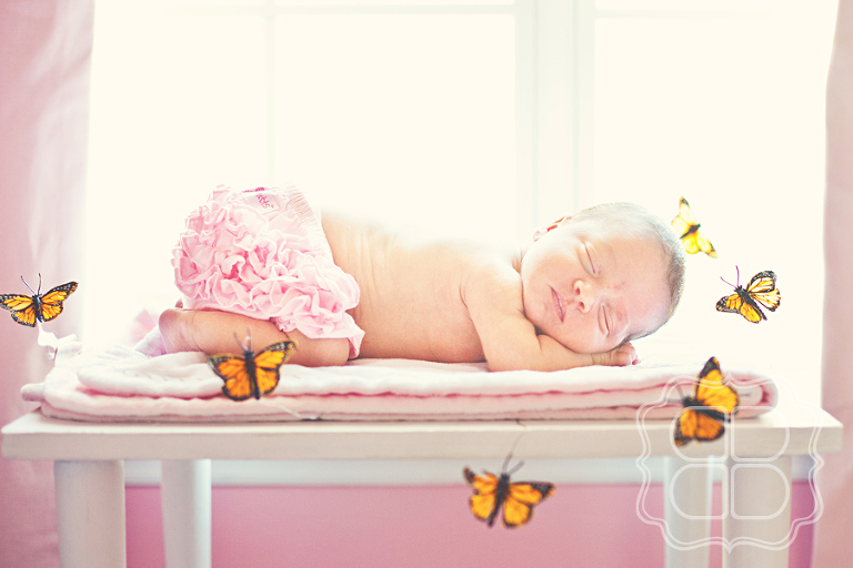 Portrait of a Charlotte NC newborn Baby