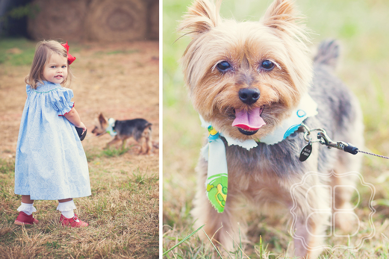 Child walks a puppy for photo
